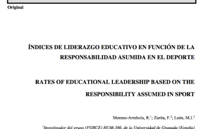 Publication on Educational Leadership and Responsibility, from the Sport Area